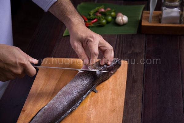 lấy phi lê cá lóc