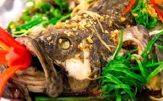 Cá mú hấp hồng kông vị ngon khơi bừng vị giác