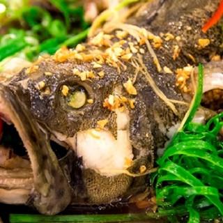 cá mú hấp hồng kông đậm đà