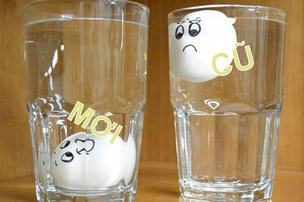 Phân biệt trứng cũ trứng