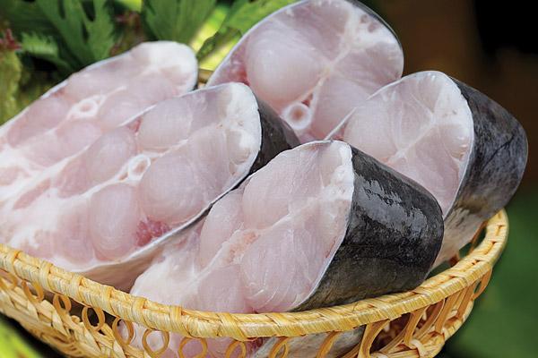Cách phân biệt cá ba sa và cá hú